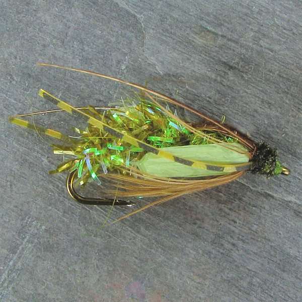 Crystal Sedge Pupa