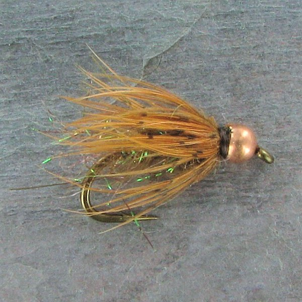 Longhorned Caddis Pupa